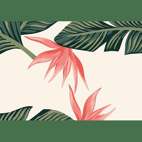Individual Tropical