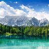 Fotomural Montañas y Bosque Verde