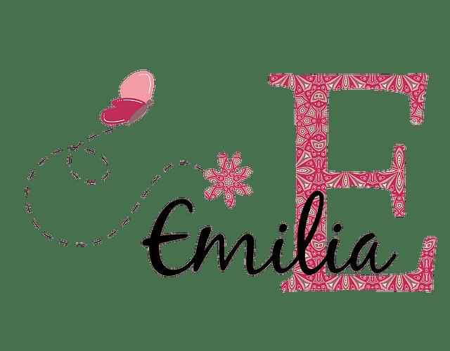 Vinilos para Muro - Emilia mandala