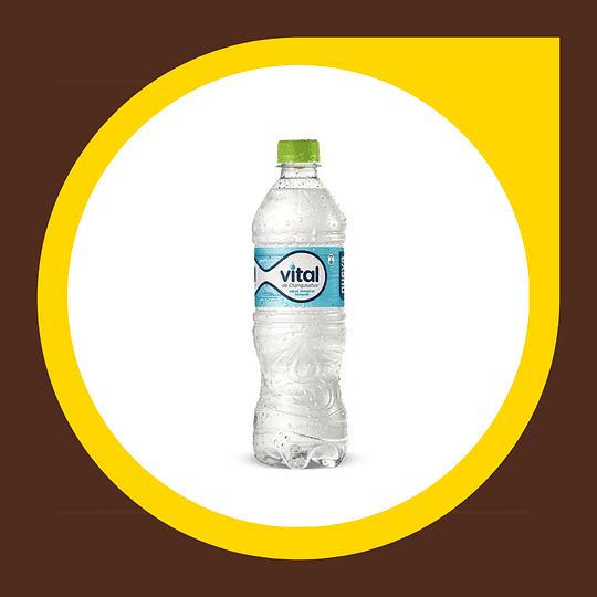 Agua Mineral con Gas 600ml