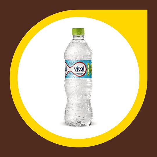 Agua Mineral sin Gas 600ml