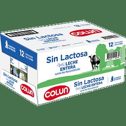 CAJA LECHE ENTERA SIN LACTOSA - 12 UNIDADES