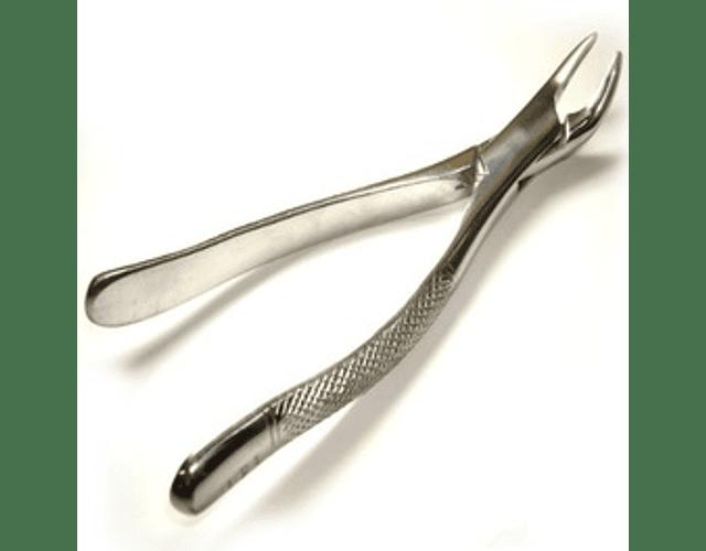 Forceps Adulto Bayoneta (Fino,Grueso)