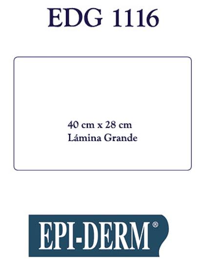 EPIDERM 1116