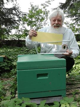 Das 1-2-3 DALINNO-Rähmchen vom Original Honigmann
