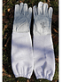 Beekeepers gloves type 1, leather, with long gloves mesh