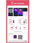 Equinox Estimulador Anal con Vibración y App