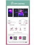 Magic Fugu Vibrador con App