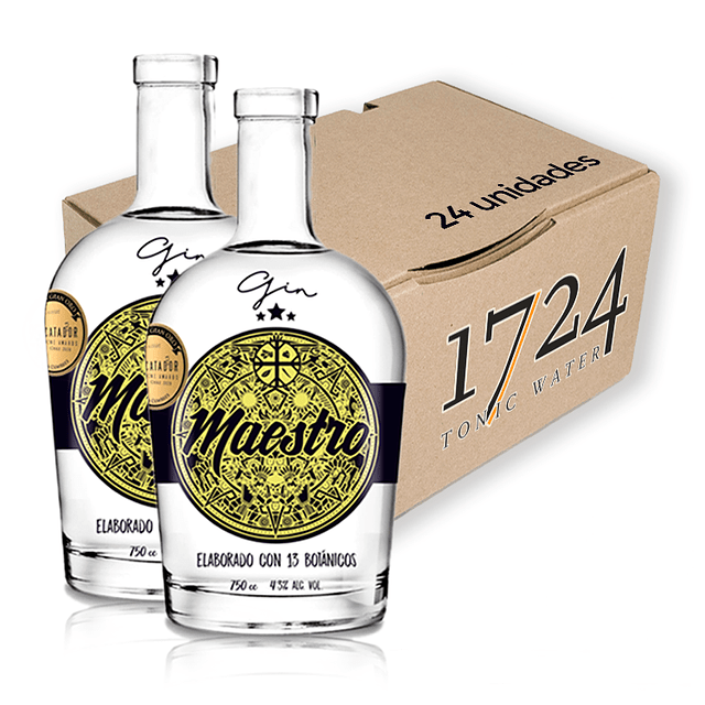 2 GIN MAESTRO + 24 TONIC WATER