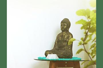 ¿Qué momento del día prefieres para meditar?