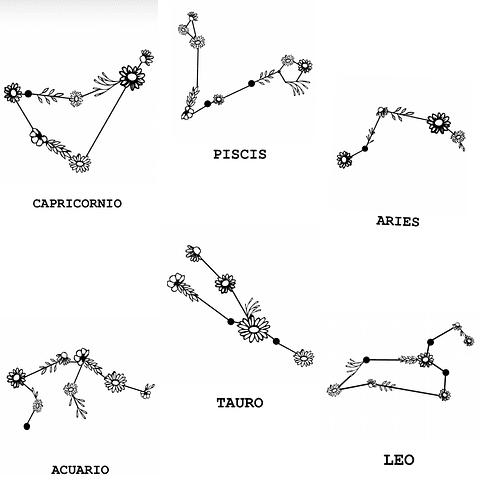 Polera Kali Constelación