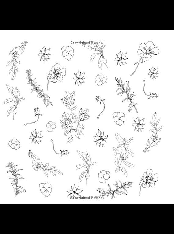 The Plant Lady - Sarah Simon