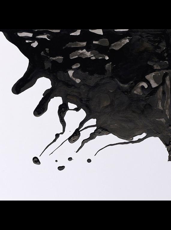 Winsor & Newton - Tinta para Dibujo Black Indian Ink, 250 ml