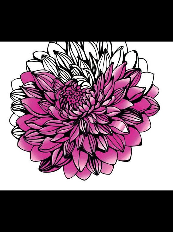 Chameleon Color Tops - Set 5 Marcadores Tonos Florales