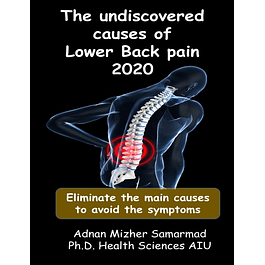 The undiscovered causes of Lower Back Pain: Eliminate the main causes to avoid the symptoms