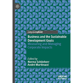 Business and the Sustainable Development Goals: Measuring and Managing Corporate Impacts