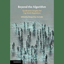 Beyond the Algorithm: Qualitative Insights for Gig Work Regulation