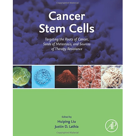 Cancer Stem Cells: Targeting the Roots of Cancer, Seeds of Metastasis, and Sources of Therapy Resistance