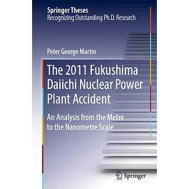 The 2011 Fukushima Daiichi Nuclear Power Plant Accident: An Analysis from the Metre to the Nanometre Scale