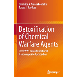 Detoxification of Chemical Warfare Agents: From WWI to Multifunctional Nanocomposite Approaches
