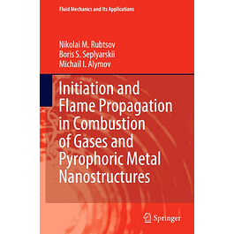 Initiation and Flame Propagation in Combustion of Gases and Pyrophoric Metal Nanostructures