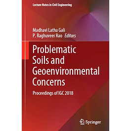 Problematic Soils and Geoenvironmental Concerns: Proceedings of IGC 2018