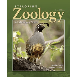 Exploring Zoology in the Laboratory