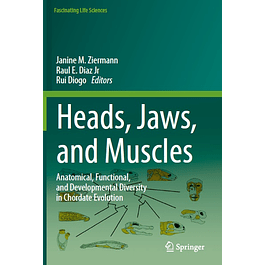 Heads, Jaws, and Muscles: Anatomical, Functional, and Developmental Diversity in Chordate Evolution