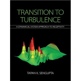 Transition to Turbulence: A Dynamical System Approach to Receptivity