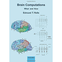 Brain Computations: What and How