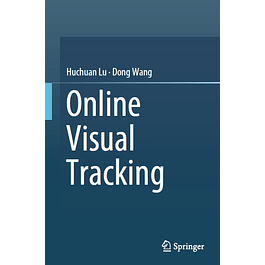 Online Visual Tracking