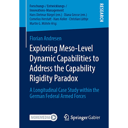 Exploring Meso-Level Dynamic Capabilities to Address the Capability Rigidity Paradox: A Longitudinal Case Study within the German Federal Armed Forces
