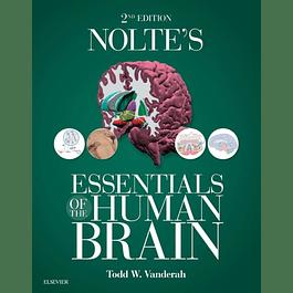 Nolte's Essentials of the Human Brain