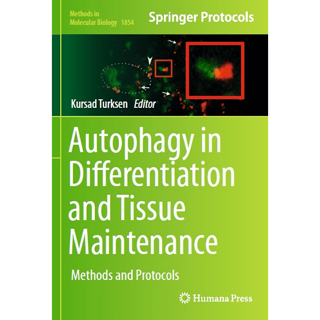 Autophagy in Differentiation and Tissue Maintenance: Methods and Protocols
