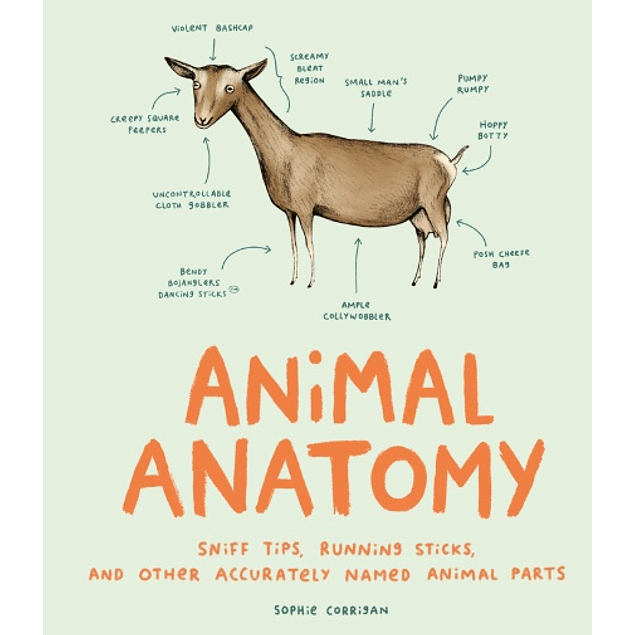 Animal Anatomy: Sniff Tips, Running Sticks, and Other Accurately Named Animal Parts