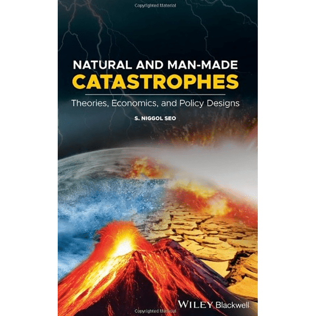 Natural and Man-Made Catastrophes: Theories, Economics, and Policy Designs