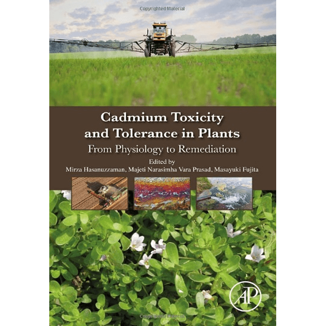 Cadmium Toxicity and Tolerance in Plants: From Physiology to Remediation