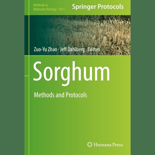 Sorghum: Methods and Protocols