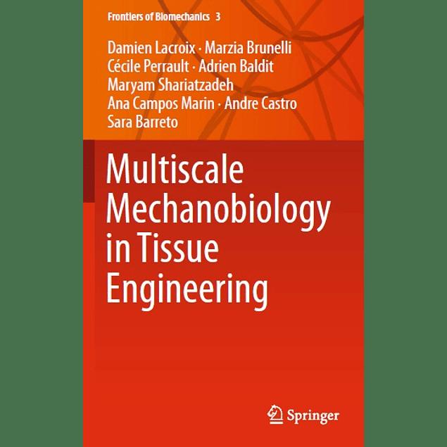 Multiscale Mechanobiology in Tissue Engineering