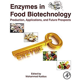 Enzymes in Food Biotechnology: Production, Applications, and Future Prospects