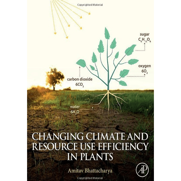 Changing Climate and Resource use Efficiency in Plants