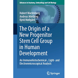 The Origin of a New Progenitor Stem Cell Group in Human Development: An Immunohistochemical-, Light- and Electronmicroscopical Analysis