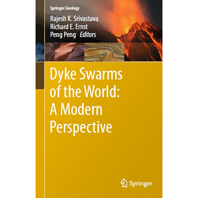 Dyke Swarms of the World: A Modern Perspective