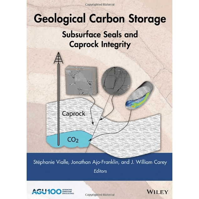 Geological Carbon Storage: Subsurface Seals and Caprock Integrity