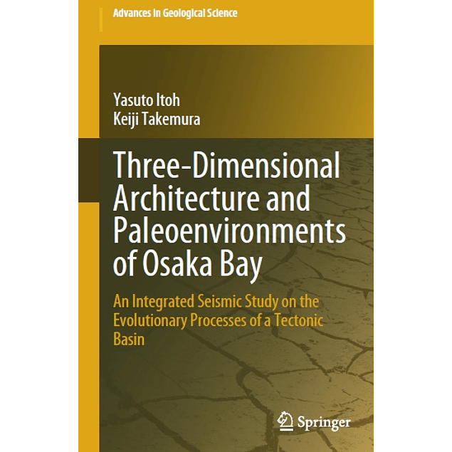Three-Dimensional Architecture and Paleoenvironments of Osaka Bay: An Integrated Seismic Study on the Evolutionary Processes of a Tectonic Basin