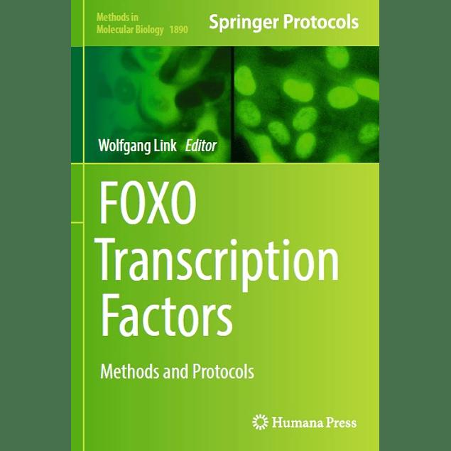 FOXO Transcription Factors: Methods and Protocols