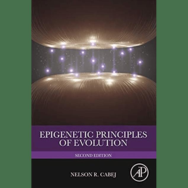 Epigenetic Principles of Evolution