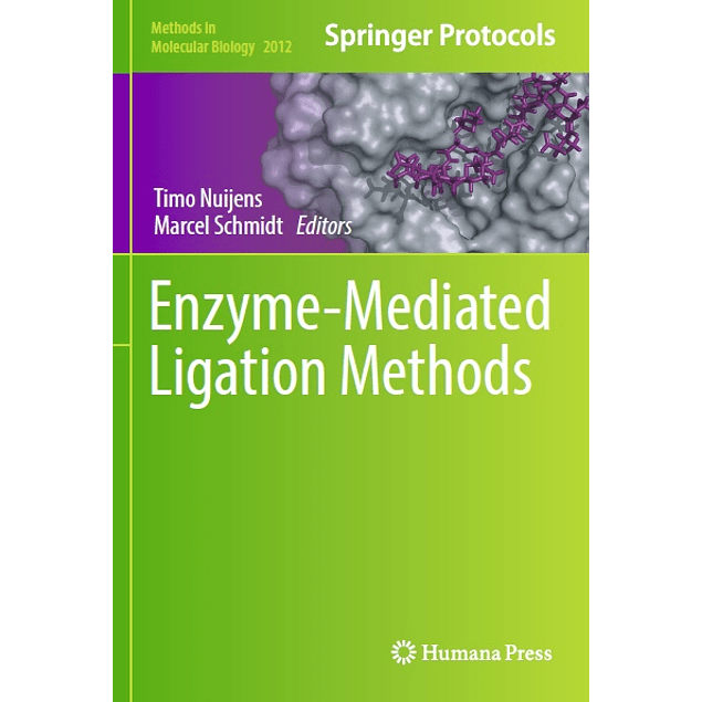 Enzyme-Mediated Ligation Methods