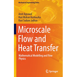 Microscale Flow and Heat Transfer: Mathematical Modelling and Flow Physics