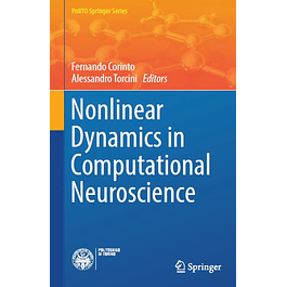 Nonlinear Dynamics in Computational Neuroscience
